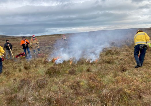 Controlled/prescribed burning