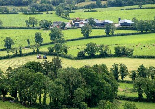 Back British Farming Day 2020