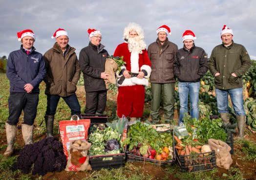 Northern Ireland's vegetable growers are feeling festive