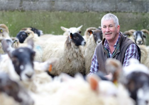 UFU deputy president Victor Chesnutt, discusses walks, gates and lambing