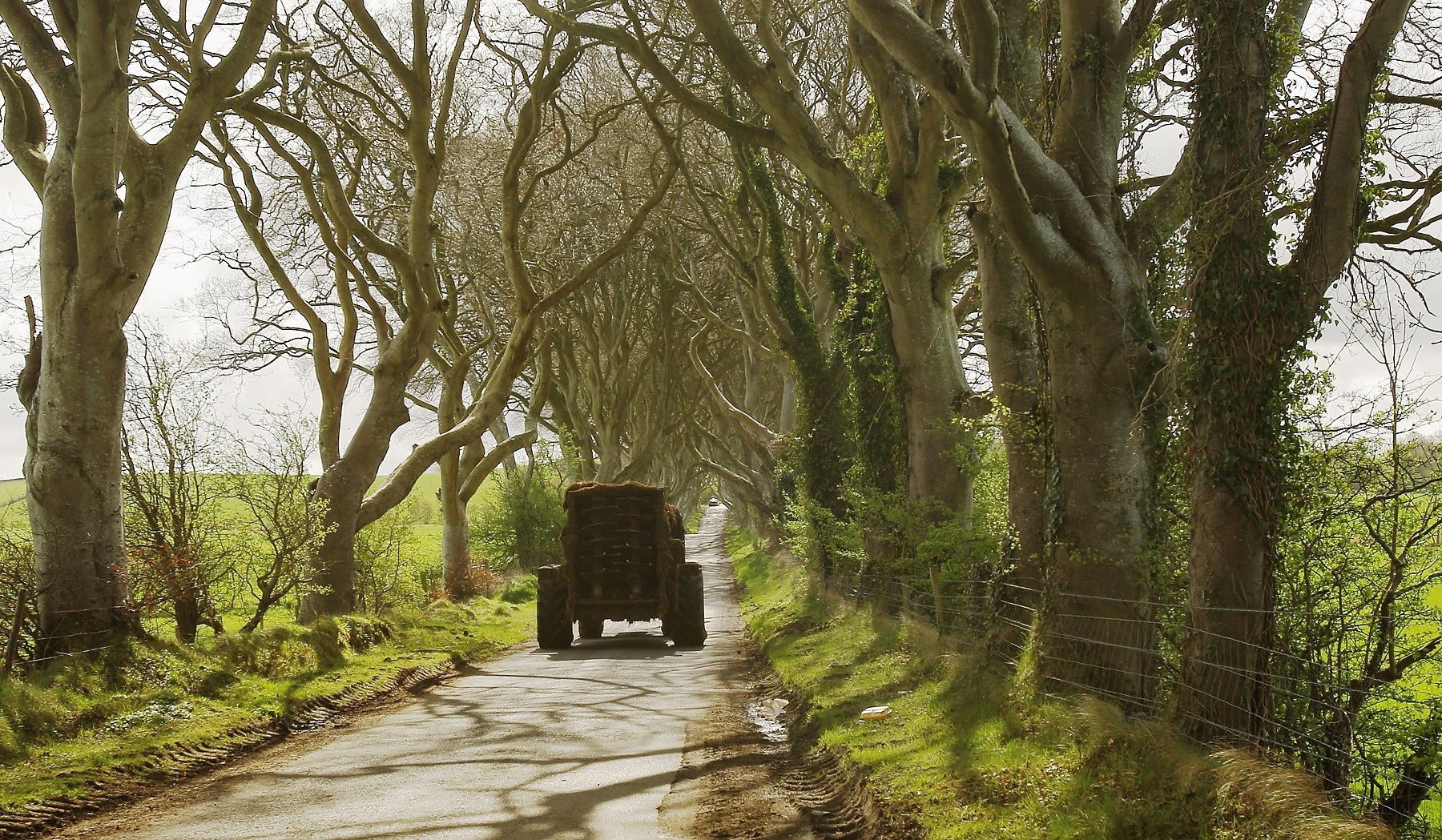 UFU asking farmers to be mindful of bikes on roads